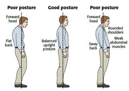 Différents types de Postures